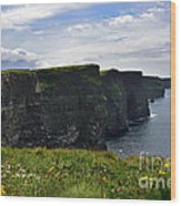 Cliffs Of Moher Looking South Wood Print