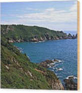 Cliffs On Isle Of Guernsey Wood Print