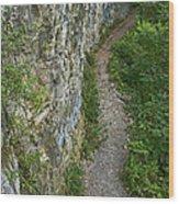 Cliffside Path Wood Print
