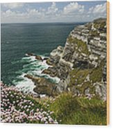 Cliffs Of Kerry Ireland Wood Print by Dick Wood