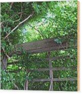 Climb To Paradise Wood Print