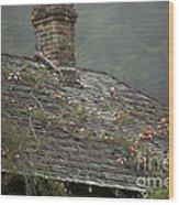 Climbing Roses Wood Print by Ron Sanford