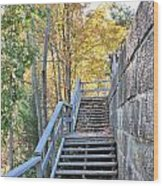 Climing Into Autumn Wood Print
