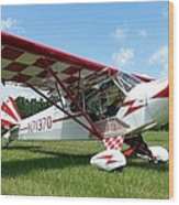 Clipped Wing Cub Wood Print