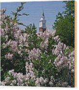Clock Tower And Lilacs Wood Print
