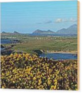 Clogher Beach And The Three Sisters Wood Print