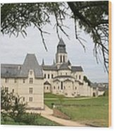 Cloister Fontevraud View - France Wood Print