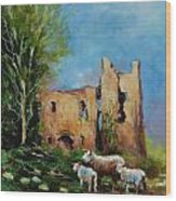 Clonmore Castle  Ireland Wood Print
