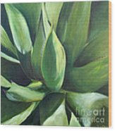 Close Cactus II - Agave Wood Print