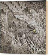 Close Crocodile  Wood Print