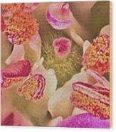 Close Flower Center Wood Print