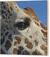 The Giraffe's Eye Wood Print