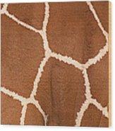Close-up Of A Reticulated Giraffe Wood Print
