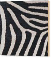 Close-up Of Greveys Zebra Stripes Wood Print