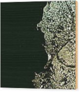 Closer To Planet X Wood Print by Robert Cunningham