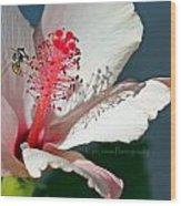 Flight Of A Bee  Wood Print