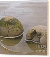 Closeup Of Famous Spherical Moeraki Boulders In Nz Wood Print