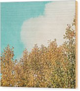 Cloud And Birches Wood Print