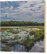 Cloud Reflection In Maine Marsh Wood Print by Jason Brow