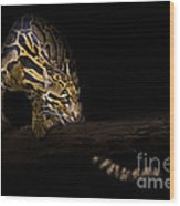 Clouded Existence Wood Print by Ashley Vincent