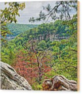 Cloudland Canyon State Park Georgia Wood Print