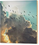 Clouds And Birds Wood Print by Dorothy Walker