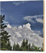 Clouds Like Mountains Behind The Pines Wood Print