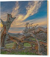 Clouds Over Broken Tree At Sunset Wood Print