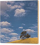 Clouds Over Lone Tree Wood Print