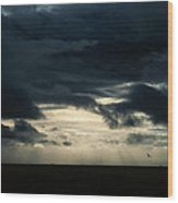 Clouds Sunlight And Seagulls Wood Print