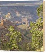 Cloudy Bright Angel Trail II Wood Print