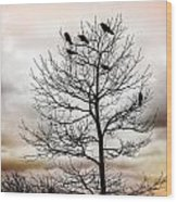 Cloudy Day Blackbirds Wood Print