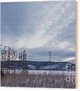 Cloudy Daybreak Dry Thistles Wood Print