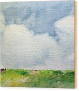 Cloudy Summerday Wood Print