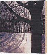 Clove Lakes Park In Winter Wood Print