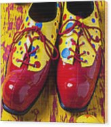 Clown Shoes And Balls Wood Print