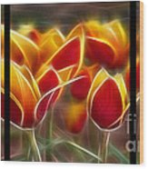 Cluisiana Tulips Triptych  Wood Print by Peter Piatt