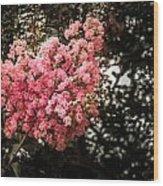 Clump Of Flowers Wood Print