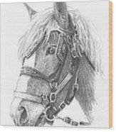 Clydesdale Horse Pencil_portrait Wood Print