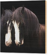 Clydesdales Wood Print by Lynn Jackson