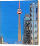 CN Tower by Night Wood Print