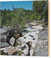 Coarsegold Creek Bed In Park Sierra-ca Wood Print