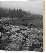 Coast 23 Wood Print