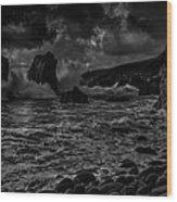 Coast 12 Wood Print