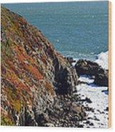 Coast Wood Print