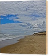 Coast Guard Beach Wood Print
