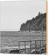 Coast Line B And W Wood Print