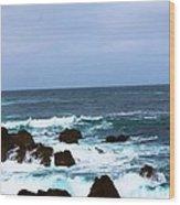 Coast Of California # 20 Wood Print