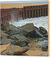 Coast Of Carolina Wood Print