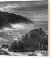 Coast Of Dreams 7 Bw Wood Print